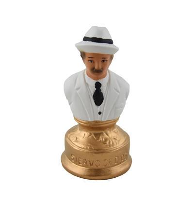 Busta Doktor Gregorio Hernandez biely